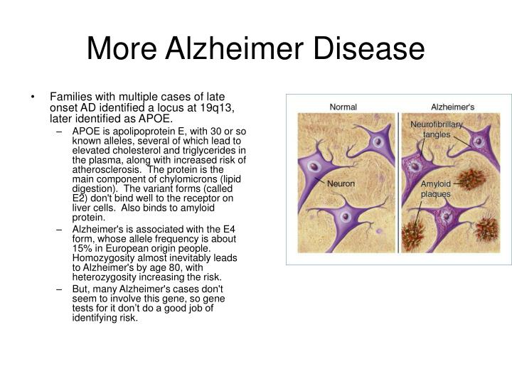 More Alzheimer Disease