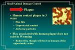 small animal damage control40