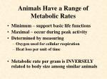 animals have a range of metabolic rates