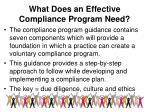 what does an effective compliance program need