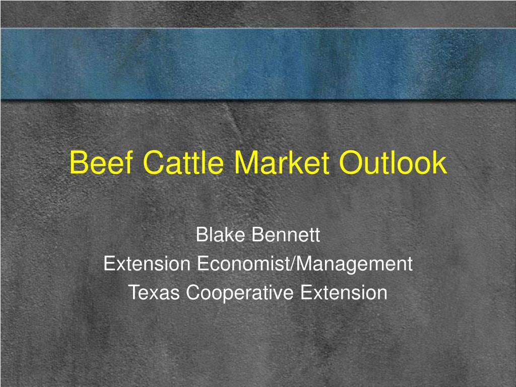 beef cattle market outlook l.