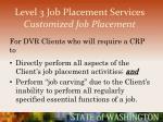 level 3 job placement services customized job placement