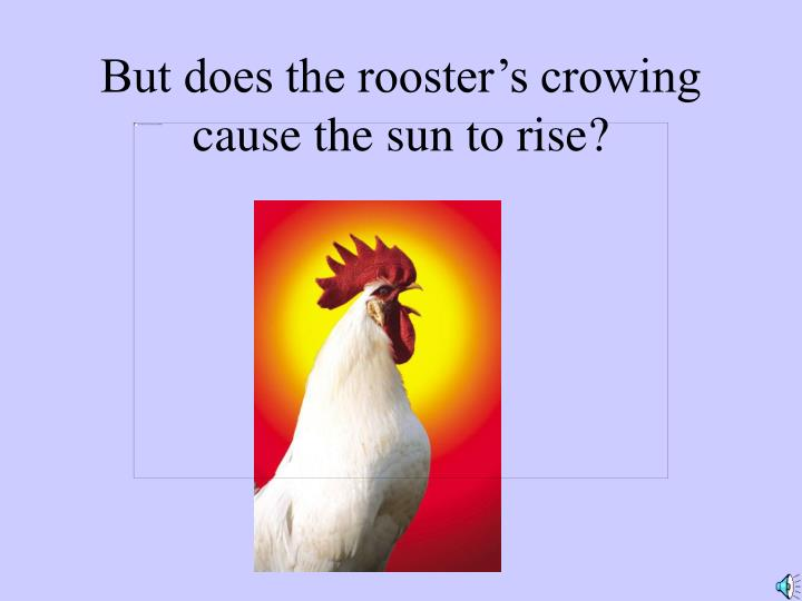 But does the rooster's crowing cause the sun to rise?