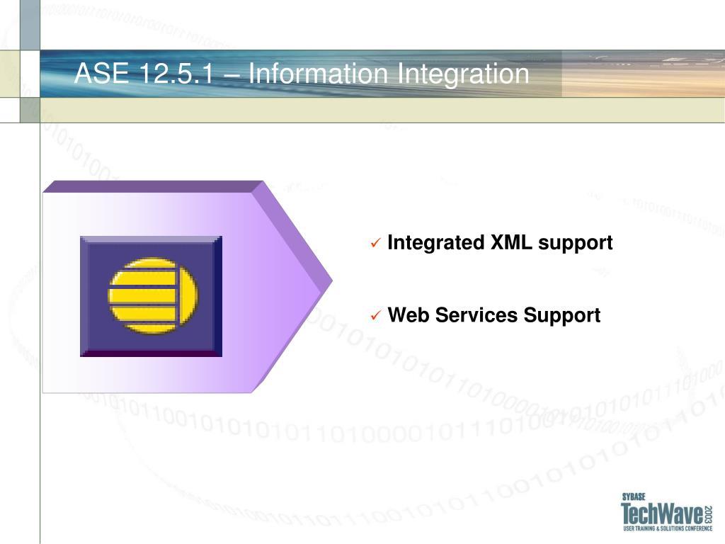 ASE 12.5.1 – Information Integration