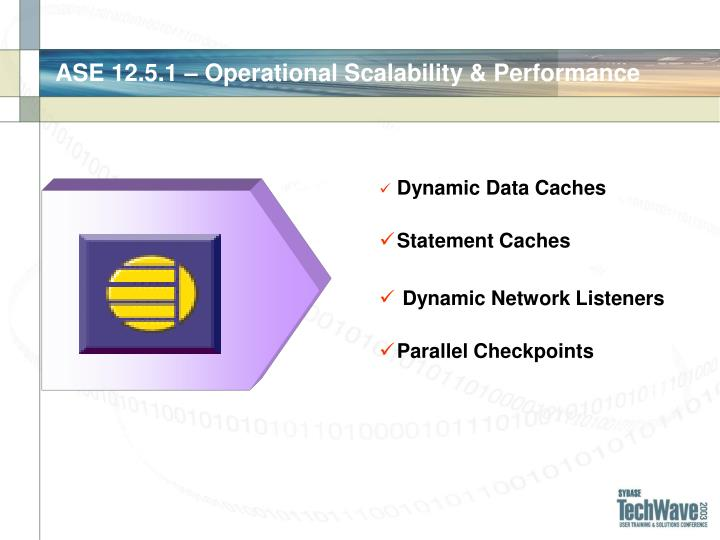 Ase 12 5 1 operational scalability performance