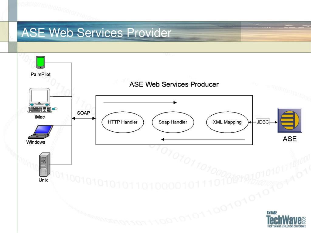 ASE Web Services Provider