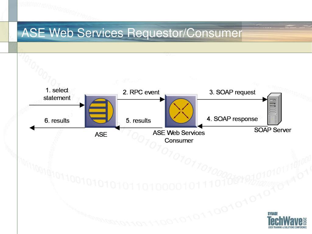 ASE Web Services Requestor/Consumer