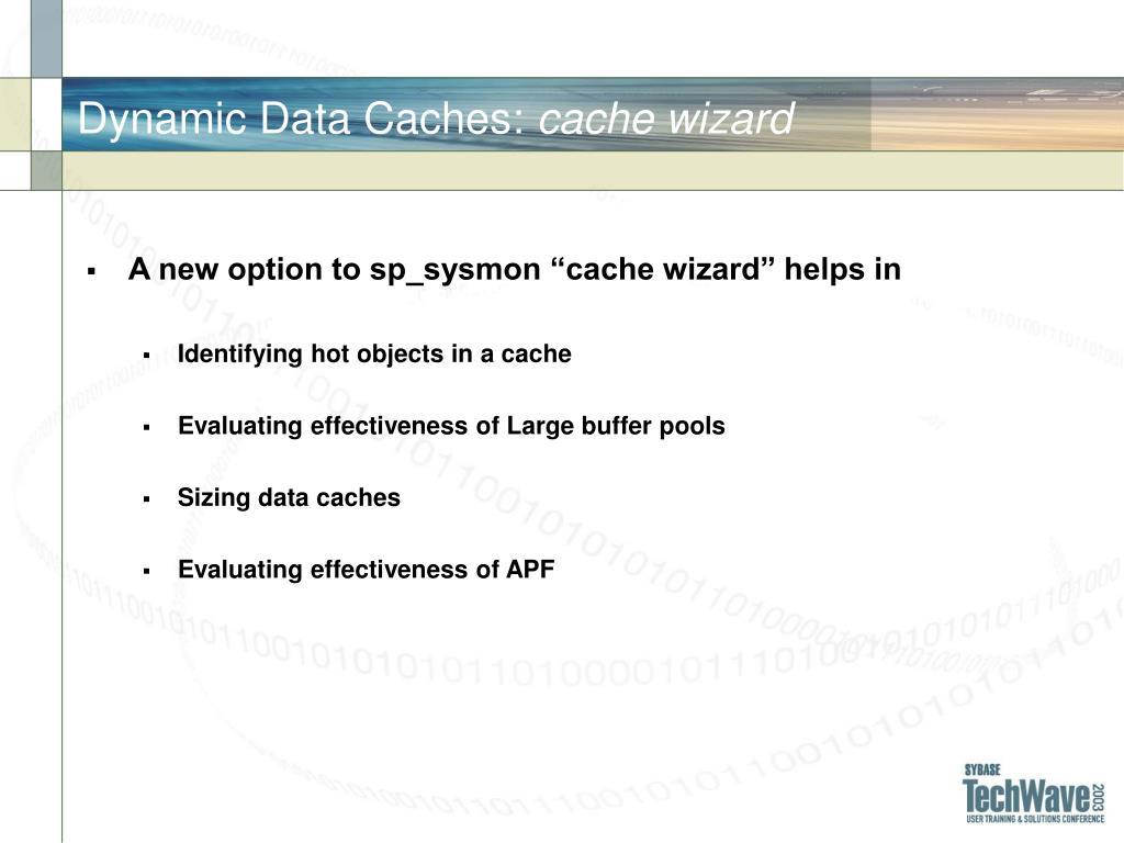 Dynamic Data Caches: