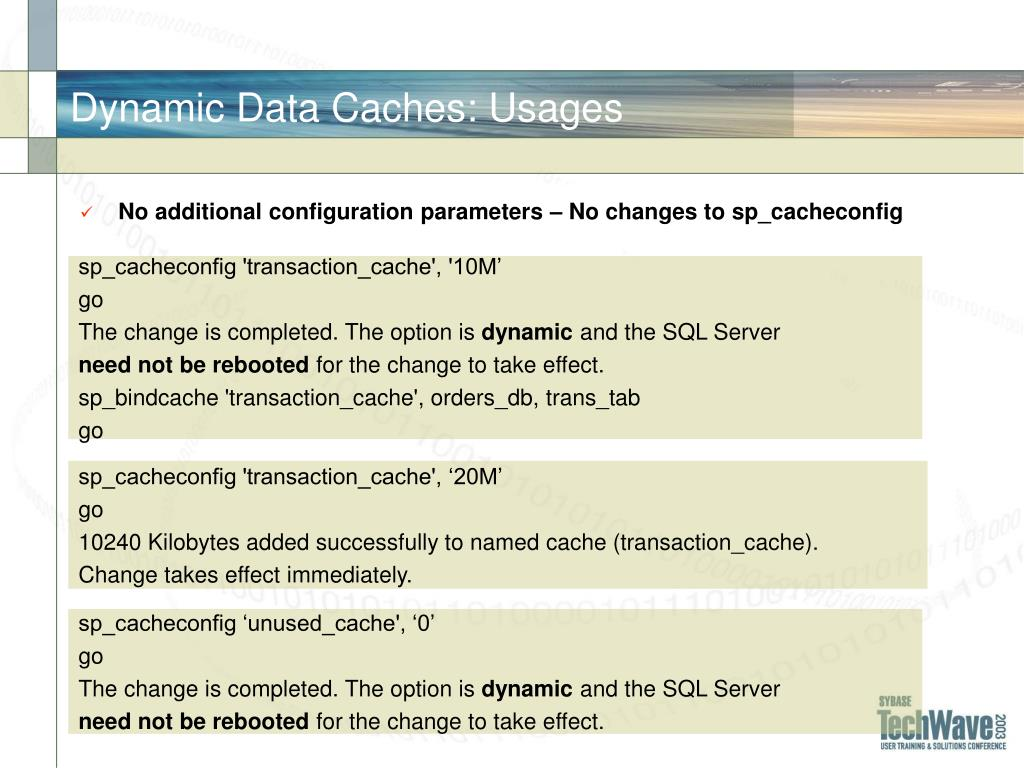 Dynamic Data Caches: Usages