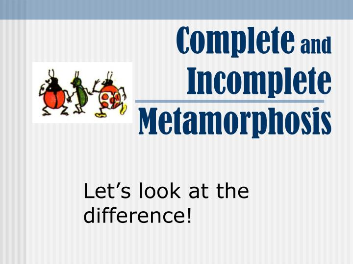 Complete and incomplete metamorphosis