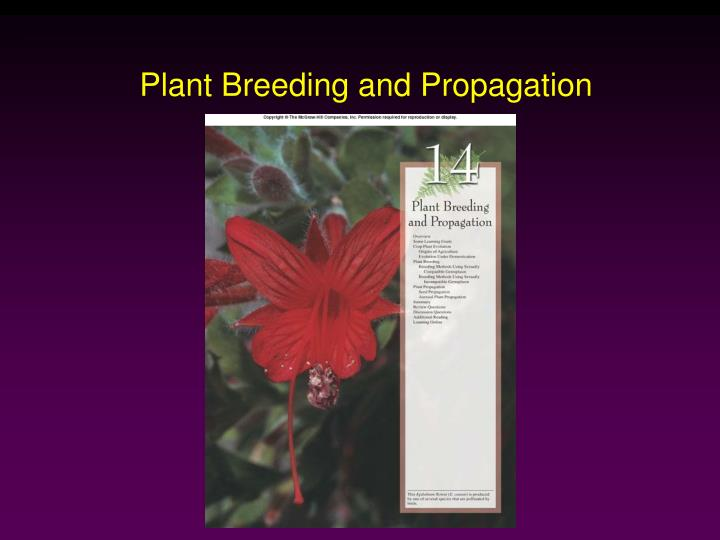 plant breeding and propagation n.