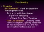 plant breeding7