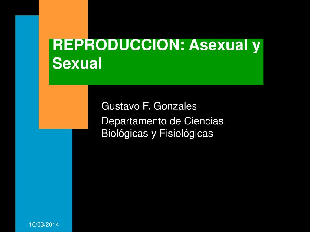 reproduccion asexual y sexual l.