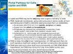 portal pathway for cells lipids and rna