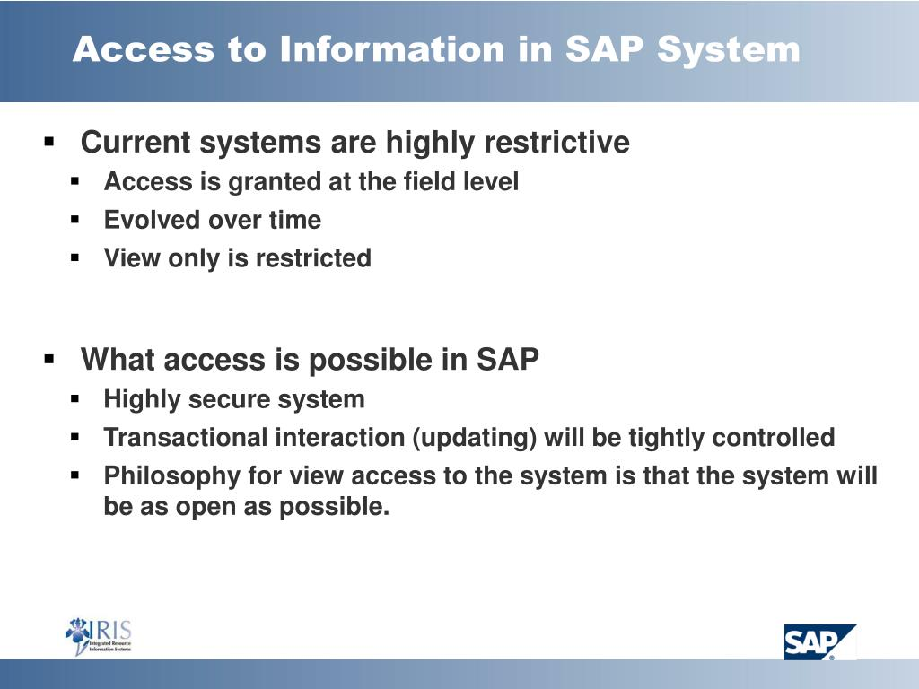 Access to Information in SAP System