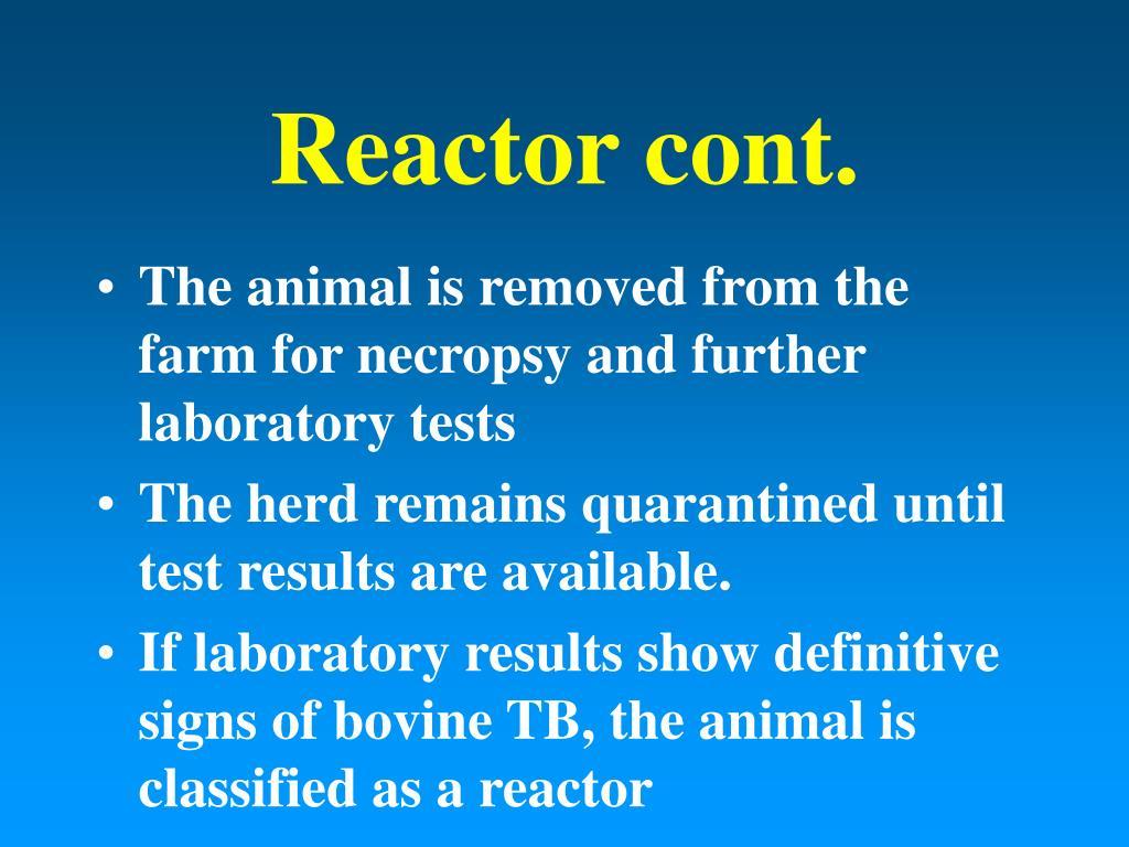 Reactor cont.