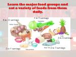 learn the major food groups and eat a variety of foods from them daily