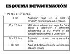 esquema de vacunaci n