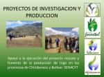 proyectos de investigacion y produccion