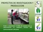 proyectos de investigacion y produccion31