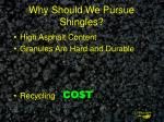 why should we pursue shingles