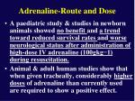 adrenaline route and dose