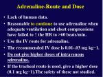 adrenaline route and dose32