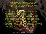 nodulo auriculo ventricular n a v