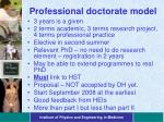 professional doctorate model