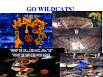 go wildcats