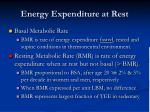 energy expenditure at rest