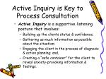 active inquiry is key to process consultation