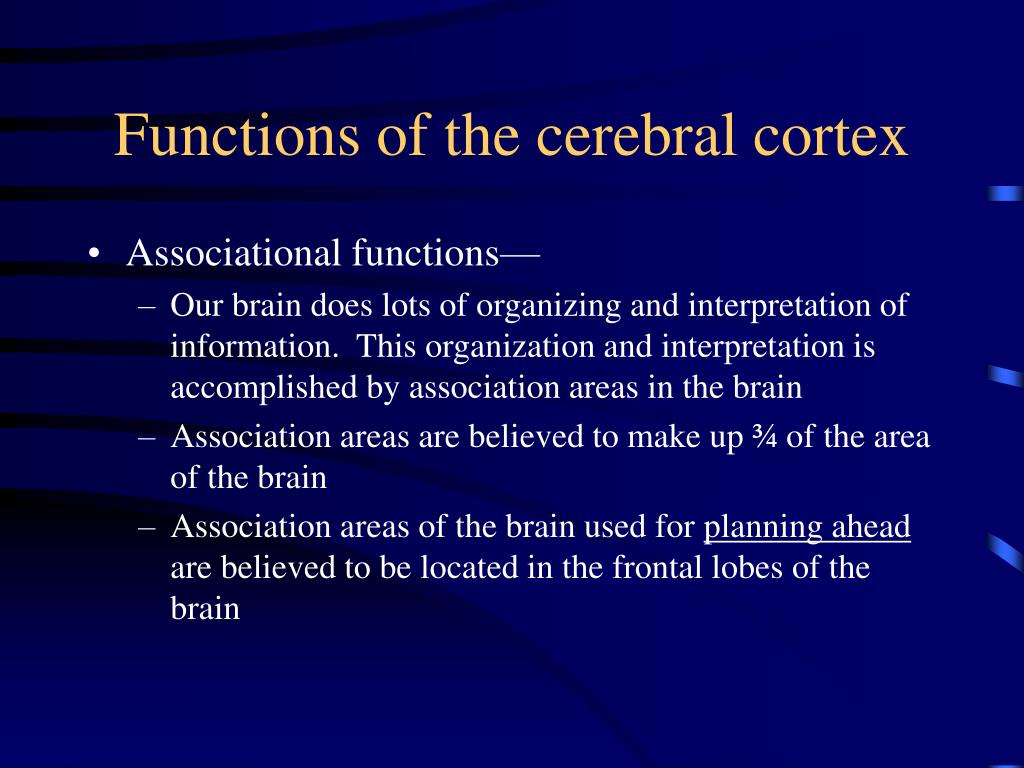 Functions of the cerebral cortex