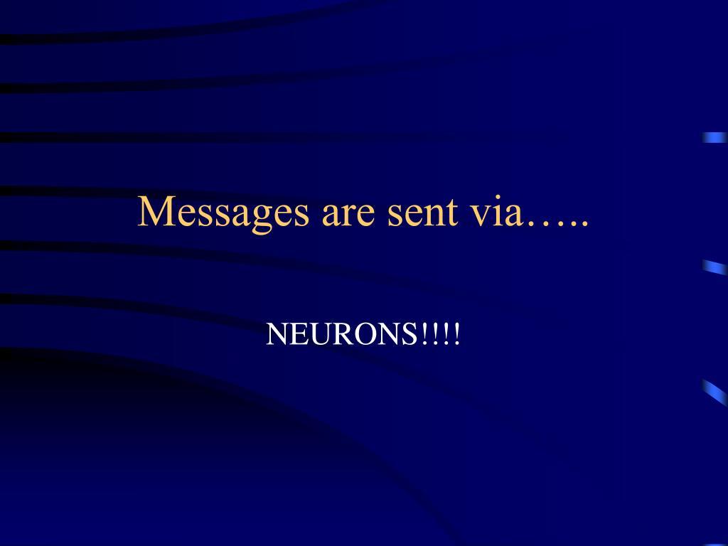 Messages are sent via…..