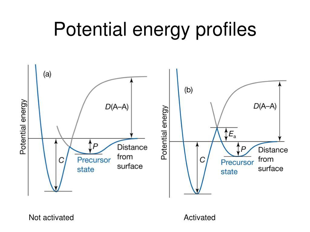 Potential energy profiles