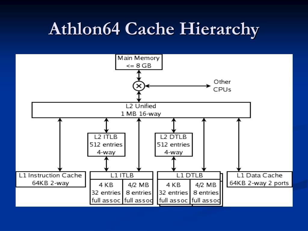 Athlon64 Cache Hierarchy