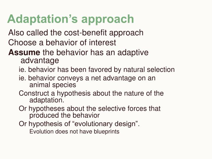 Adaptation's approach