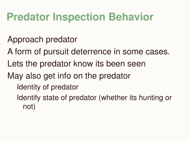 Predator Inspection Behavior