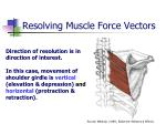 resolving muscle force vectors