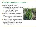 plant relationships continued