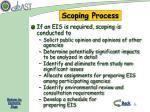 scoping process