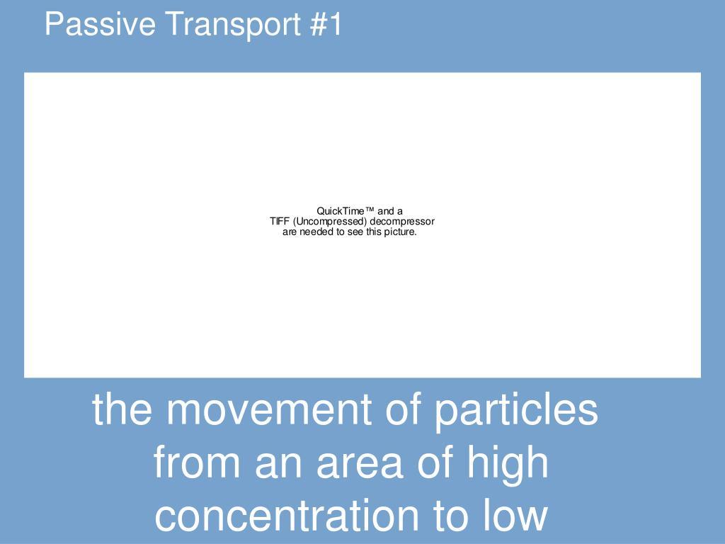 Passive Transport #1