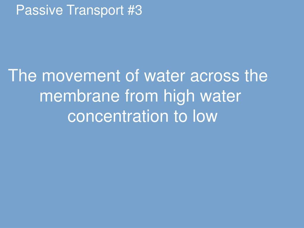Passive Transport #3