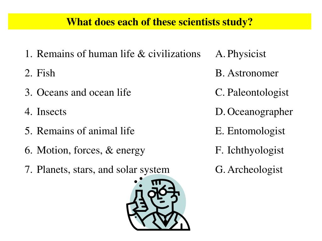 What does each of these scientists study?