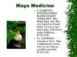 maya medicine24