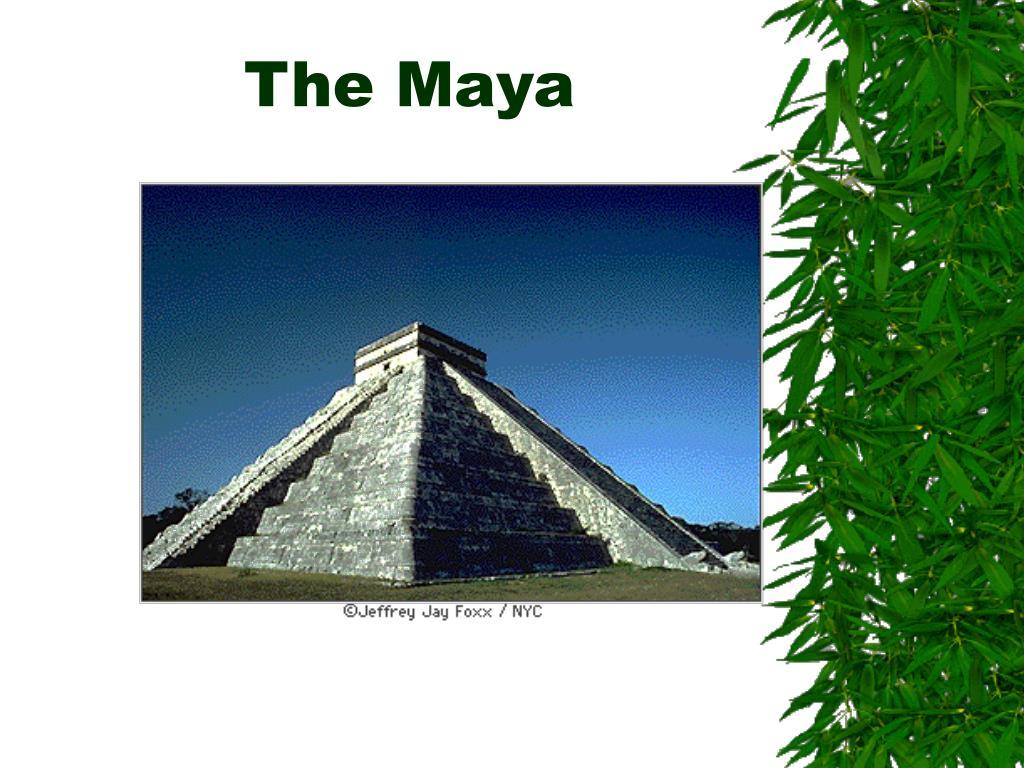 the maya l.