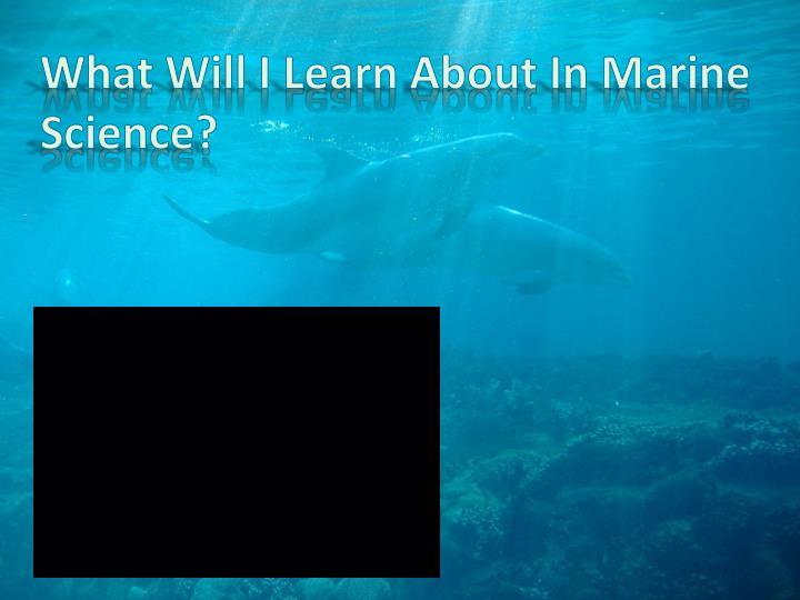 what will i learn about in marine science n.