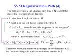 svm regularization path 414