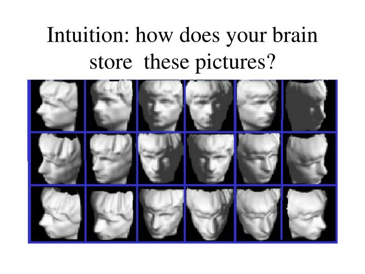 Intuition how does your brain store these pictures