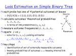 loss estimation on simple binary tree